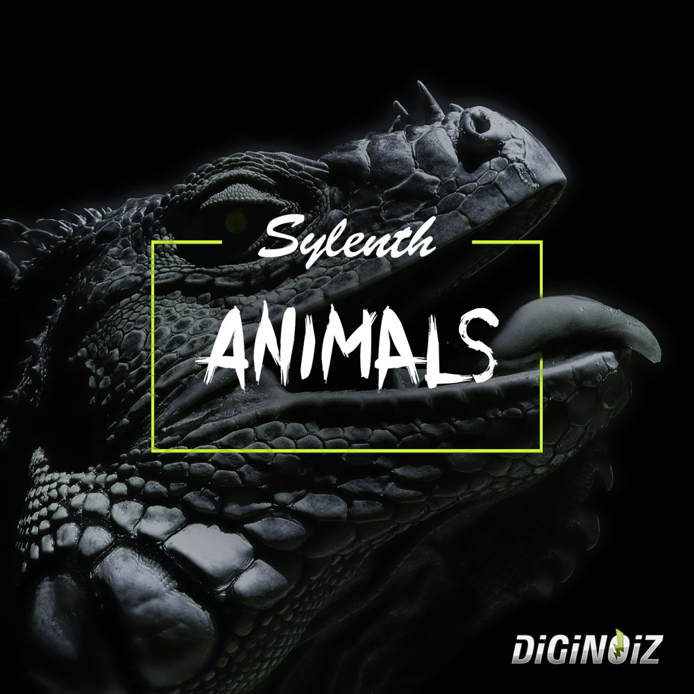 Boom Bap Samples from Diginoiz! 172 Orchestral Shots with